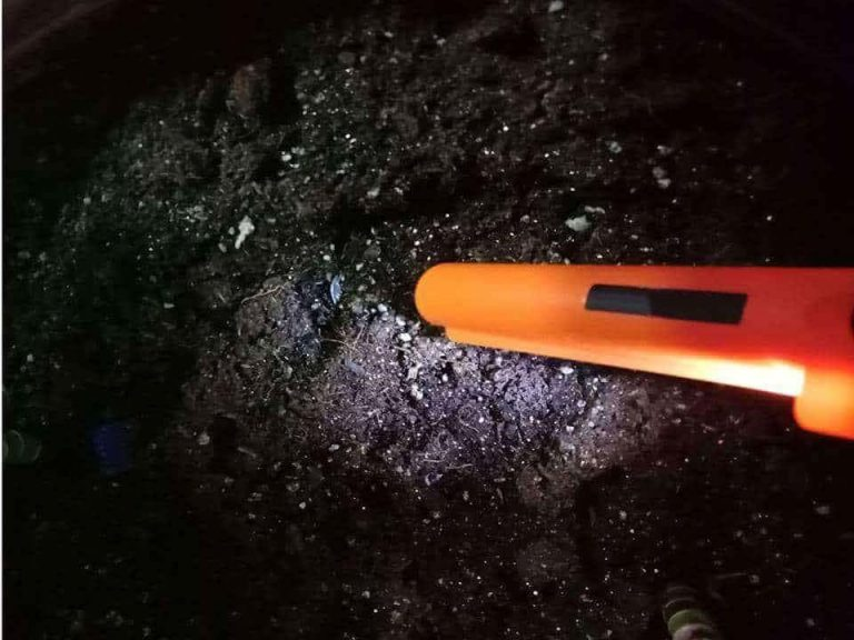 Prenosni detektor kovin Metal Hunter photo review